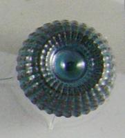 GN-21032
